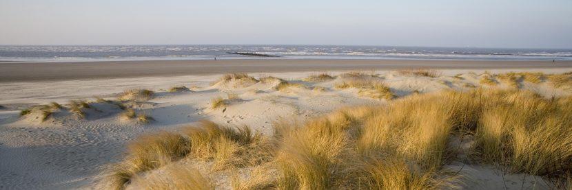 Midzomer kustwandeling (Nieuwpoort – De Panne)